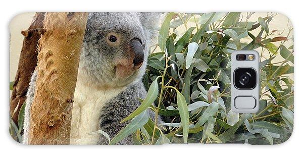 Koala Bear I Galaxy Case