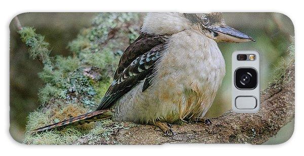Kookaburra 4 Galaxy Case