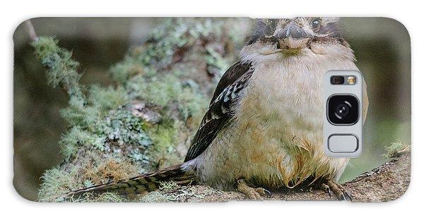 Kookaburra 3 Galaxy Case