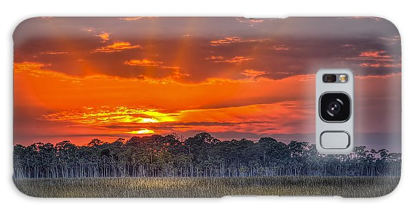 Mangrove Galaxy Case - Labor Of Love by Marvin Spates