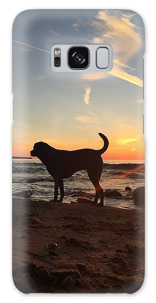 Labrador Dreams Galaxy Case