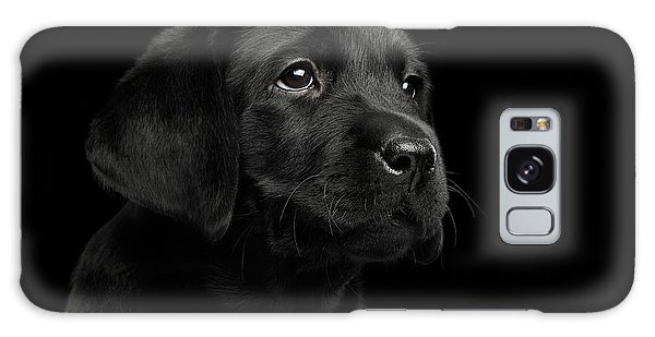 Labrador Retriever Puppy Isolated On Black Background Galaxy Case