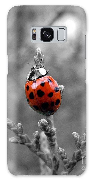 Lady Bug Galaxy Case