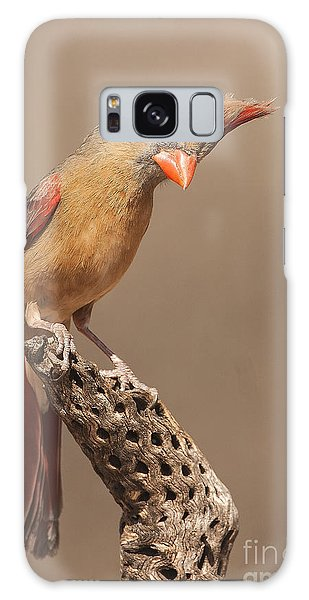 Lady Cardinal And Cholla Galaxy Case by Ruth Jolly