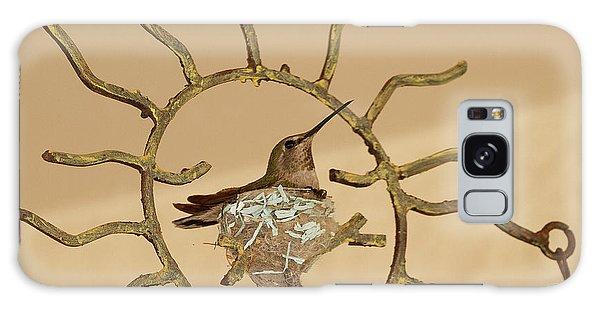 Lady Hummingbird On Her Nest Galaxy Case