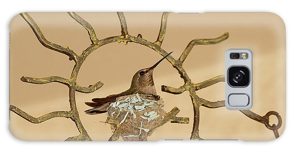 Lady Hummingbird On Her Nest Galaxy Case