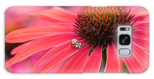 Pink Flower Galaxy Case - Ladybird And Echinacea by Tim Gainey