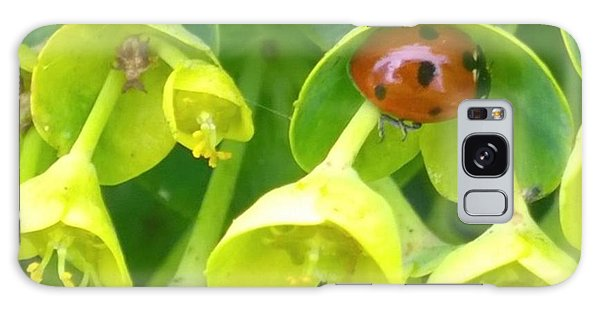 #ladybug Found Some Shelter From The Galaxy Case by Shari Warren
