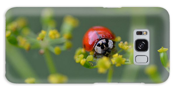 Ladybug In Red Galaxy Case