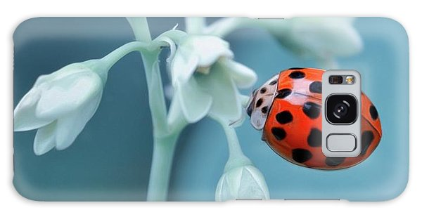Ladybug Galaxy Case by Mark Fuller