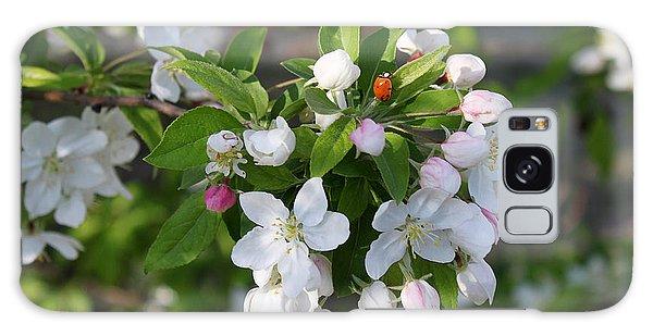 Ladybug On Cherry Blossoms Galaxy Case