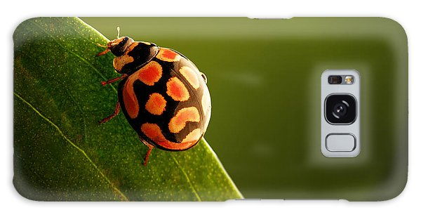 Insect Galaxy Case - Ladybug  On Green Leaf by Johan Swanepoel