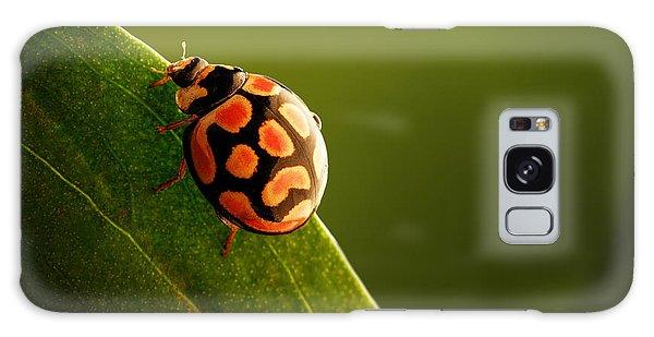 Perches Galaxy Case - Ladybug  On Green Leaf by Johan Swanepoel