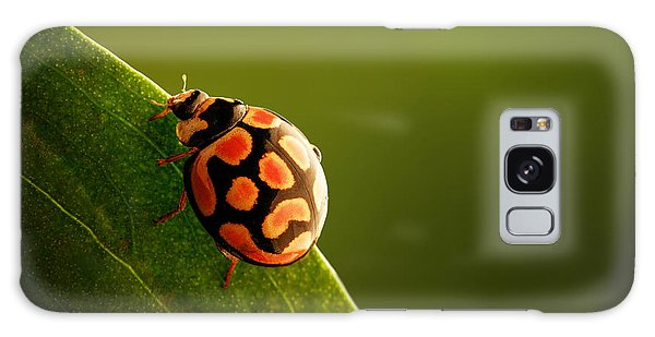 Foliage Galaxy Case - Ladybug  On Green Leaf by Johan Swanepoel