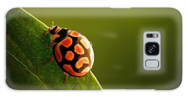 Foliage Galaxy Case - Ladybug  On Green Leaf by Johan Swanepoel
