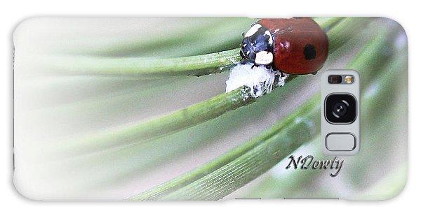 Ladybug On Pine Galaxy Case