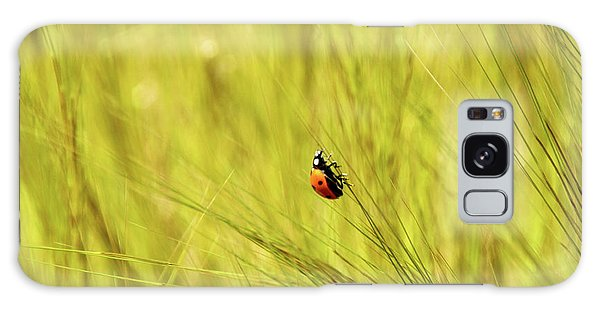 Ladybug In A Wheat Field Galaxy Case