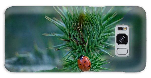 Ladybug On Thistle Galaxy Case