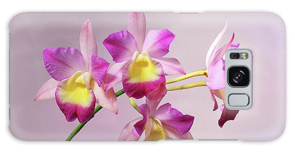 Laeliocatonia Hybrid Orchids V2 Galaxy Case