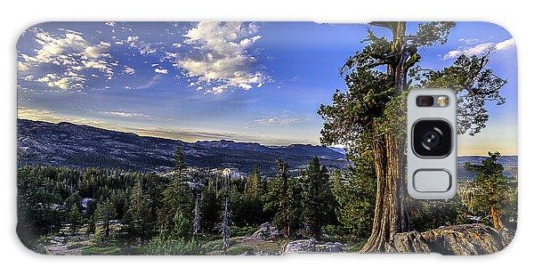 Lake Alpine Tree Galaxy Case