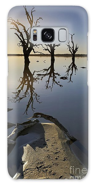 Drown Galaxy Case - Lake Bonney Barmera Riverland South Australia by Bill  Robinson