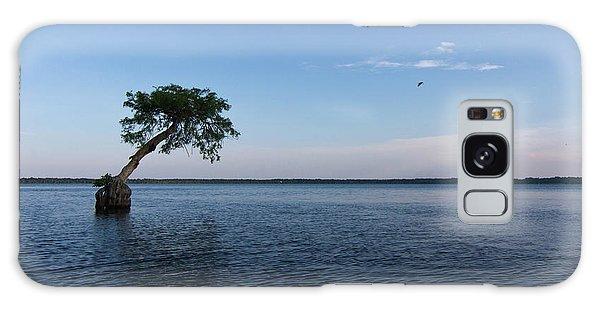 Lake Disston Cypress #2 Galaxy Case by Paul Rebmann