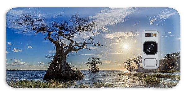 Lake Disston Cypress Paradise Galaxy Case