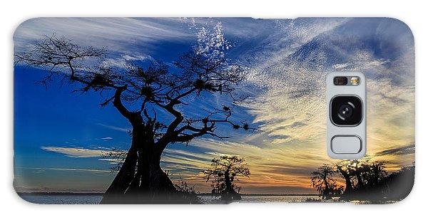 Lake Disston Sunset Galaxy Case
