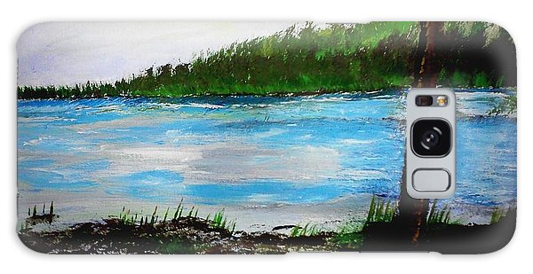 Lake In Virginia The Painting Galaxy Case