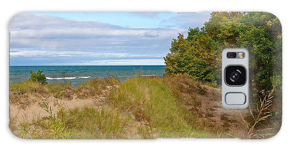 Lake Michigan Shore Galaxy Case