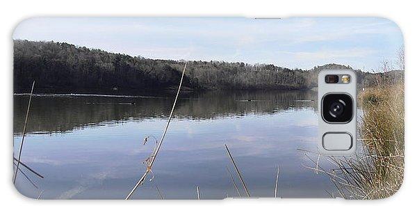 Lake Zwerner Early Spring Galaxy Case