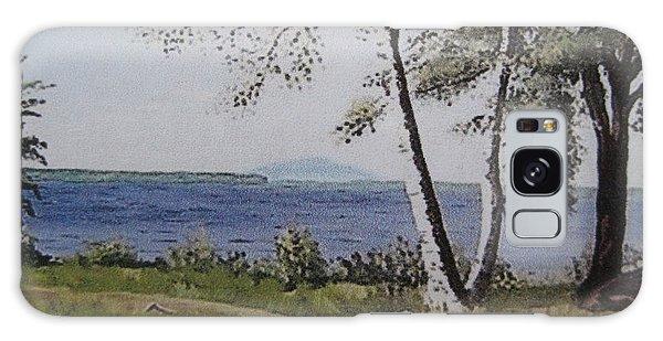 Lakeview Landing Galaxy Case