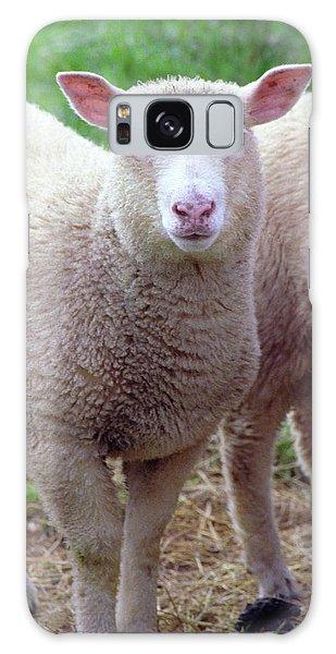 Lamb Galaxy Case