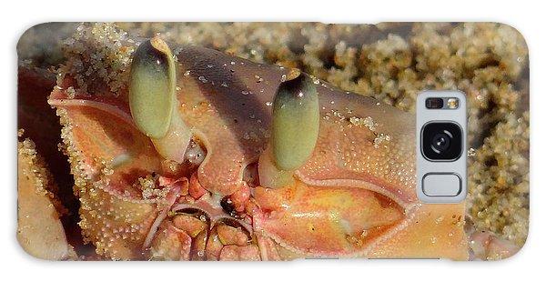 Lamu Island - Crab - Close Up 1 Galaxy Case