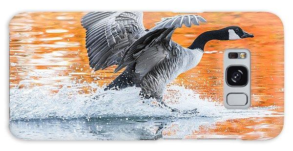 Goose Galaxy Case - Landing by Parker Cunningham
