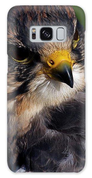Lanner Falcon Galaxy Case