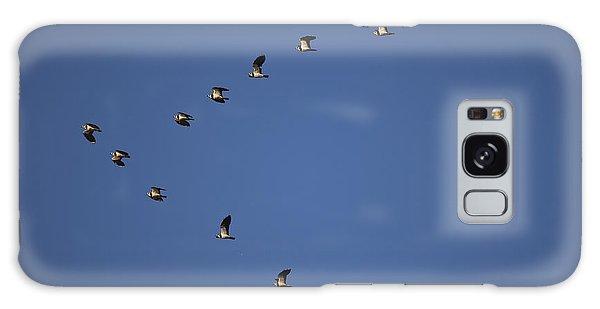 Lapwing Flock Galaxy Case by Per-Olov Eriksson