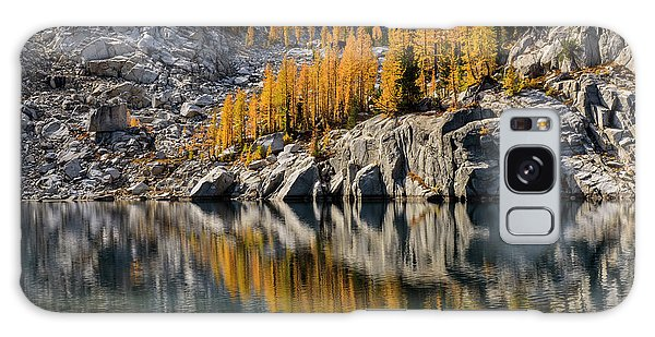 Larch Reflection In Enchantments Galaxy Case
