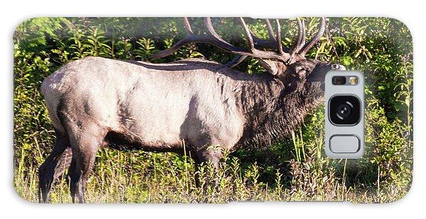 Large Bull Elk Bugling Galaxy Case