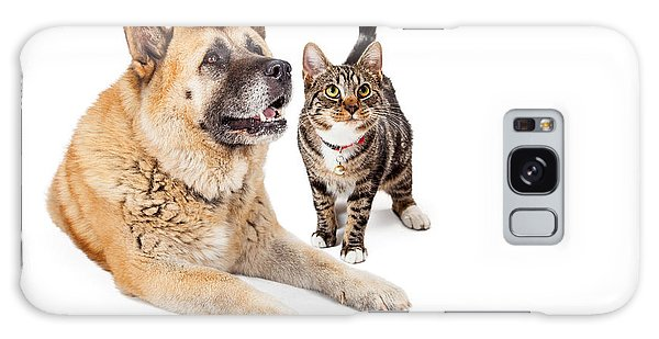 Large Dog And Cat Looking Up Together Galaxy Case
