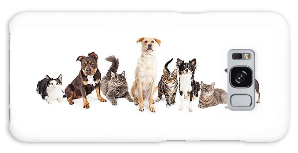 Large Group Of Cats And Dogs Together Galaxy Case