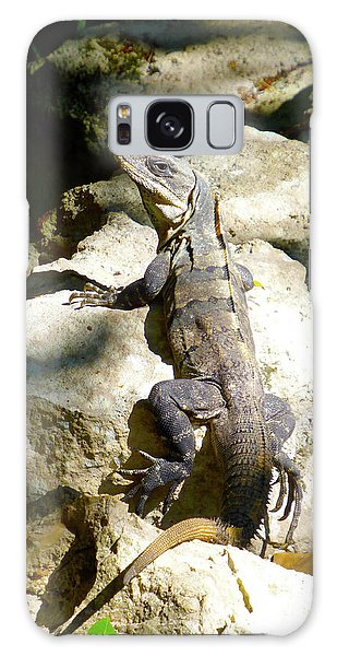Galaxy Case featuring the photograph Large Lizard M by Francesca Mackenney