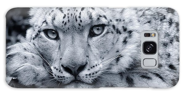 Large Snow Leopard Portrait Galaxy Case