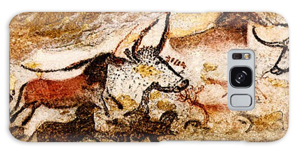 Lascaux Hall Of The Bulls Galaxy Case