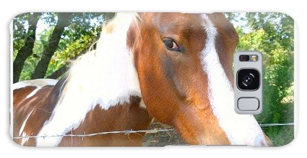 Animals Galaxy Case - Last Week, I Met My First #horse! She by Shari Warren