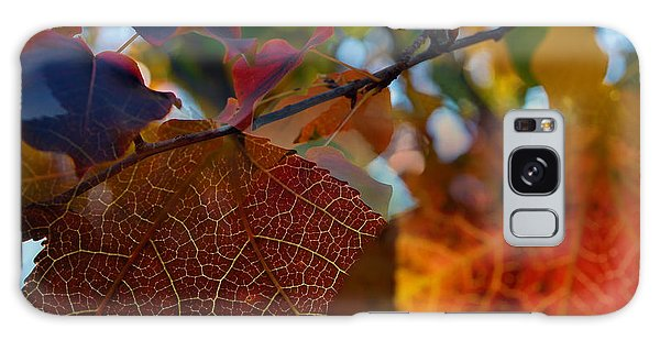Late Autumn Colors Galaxy Case by Stephen Anderson