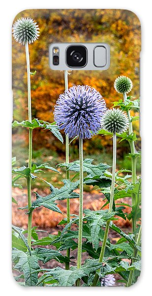 Late Bloom Among Fall Colors Galaxy Case