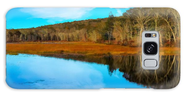 Late Fall At A Connecticut Marsh. Galaxy Case