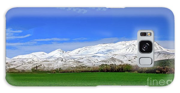 Late Spring View Galaxy Case by Robert Bales