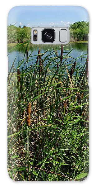 Late Summer Cattails Galaxy Case